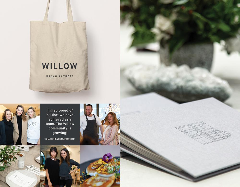 Willow Urban Retreat